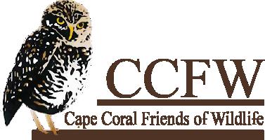CCFW Logo 3
